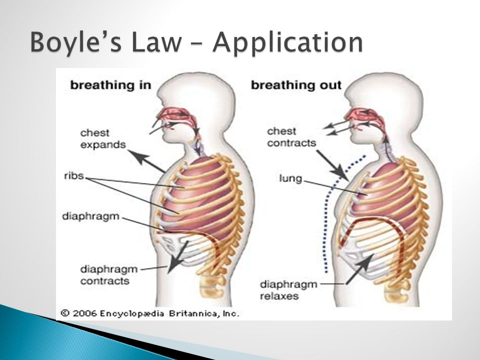 Boyle's Law – Application