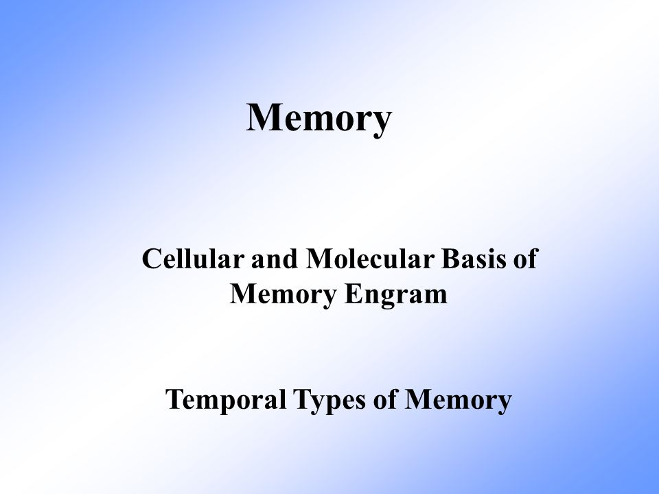 Cellular and Molecular Basis of Memory Engram Temporal Types of Memory