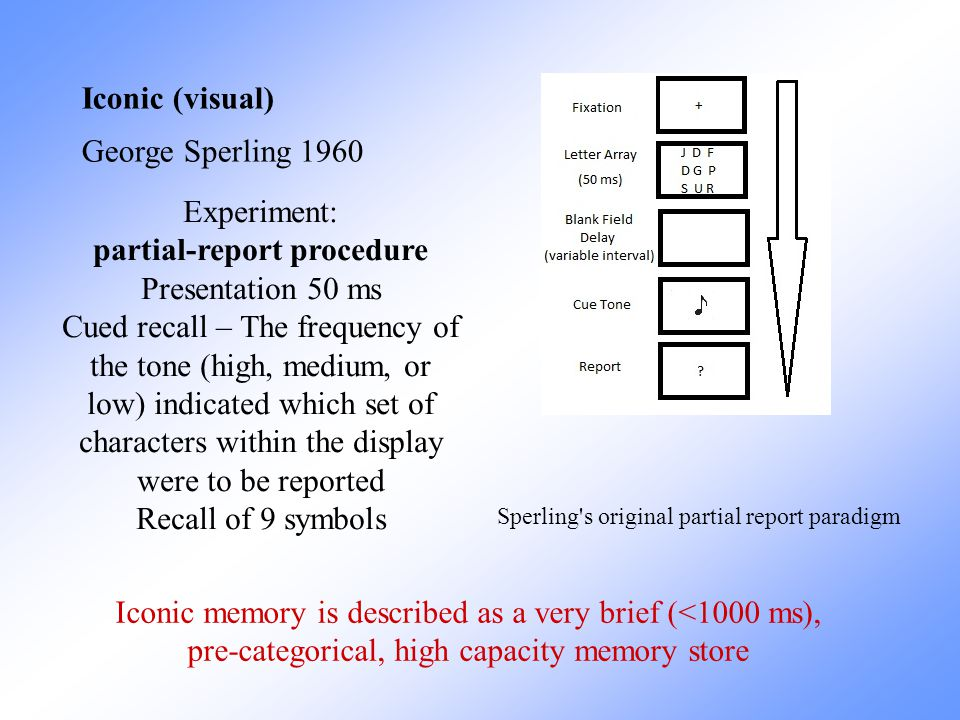 partial-report procedure