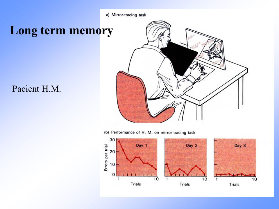 Long term memory Pacient H.M.
