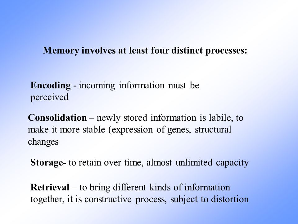 Memory involves at least four distinct processes:
