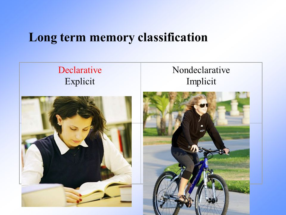 Long term memory classification
