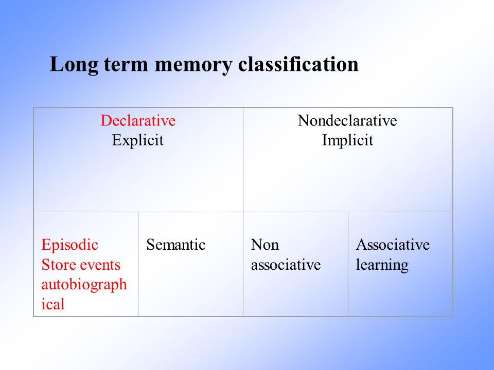 Long term memory classification