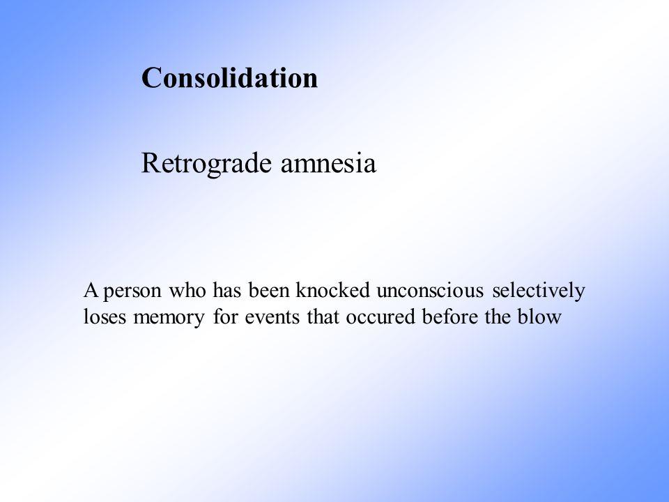 Consolidation Retrograde amnesia