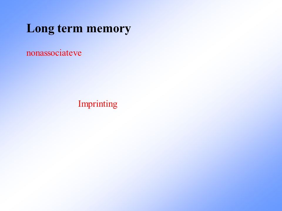 Long term memory nonassociateve Imprinting