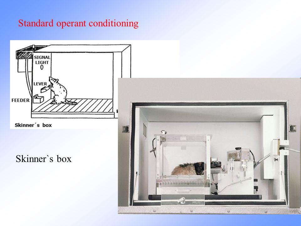 Standard operant conditioning