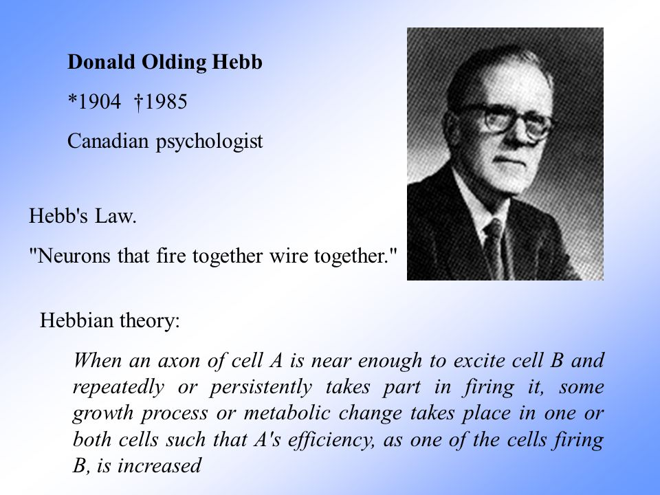 Donald Olding Hebb *1904 †1985. Canadian psychologist. Hebb s Law. Neurons that fire together wire together.