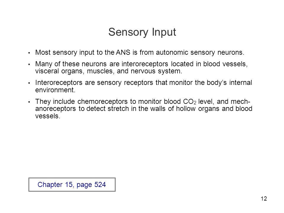 Sensory Input Most sensory input to the ANS is from autonomic sensory neurons.