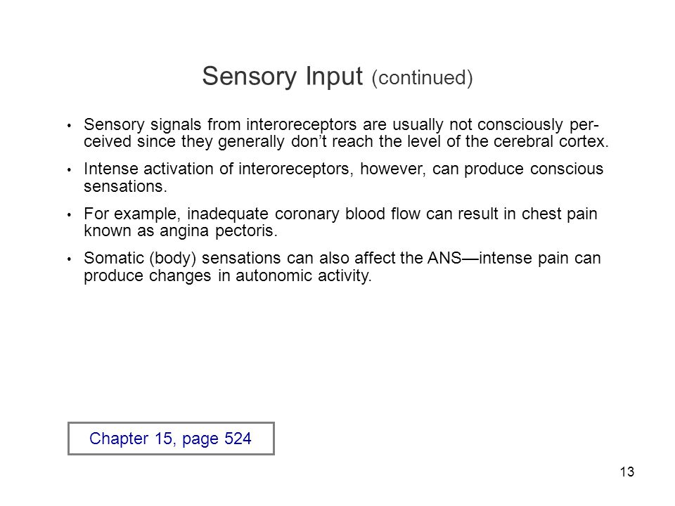 Sensory Input (continued)