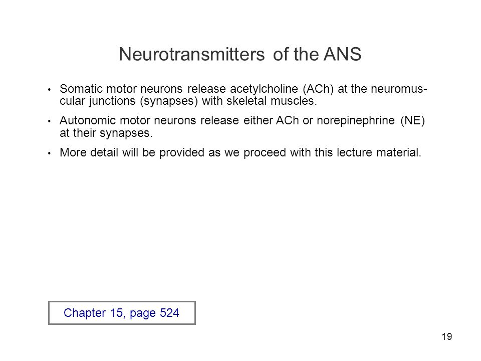 Neurotransmitters of the ANS