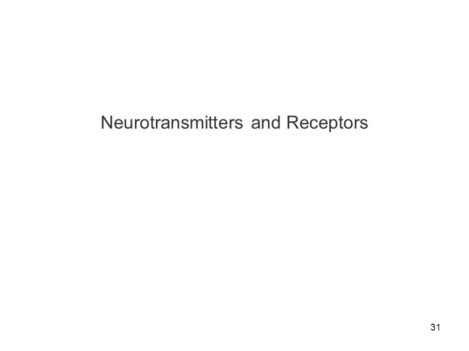 Neurotransmitters and Receptors
