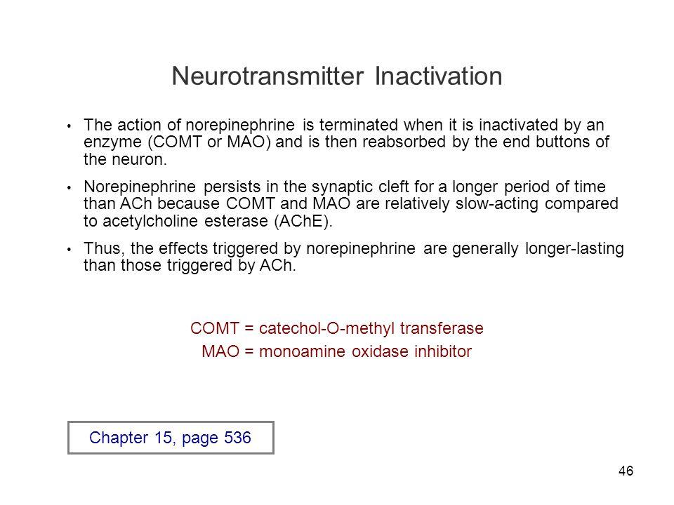 Neurotransmitter Inactivation