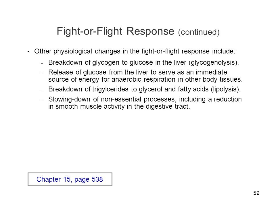 Fight-or-Flight Response (continued)