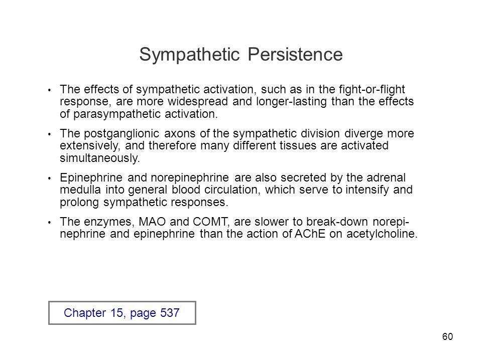 Sympathetic Persistence