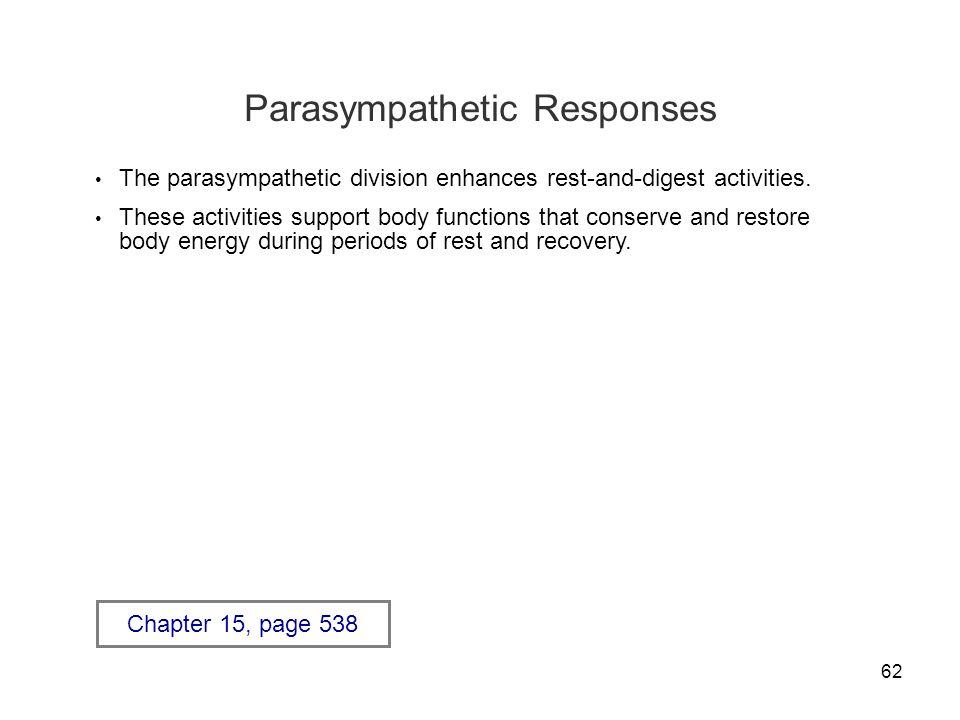 Parasympathetic Responses