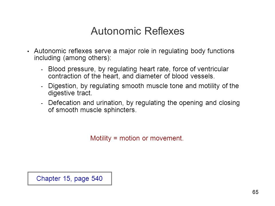 Autonomic Reflexes Autonomic reflexes serve a major role in regulating body functions including (among others):