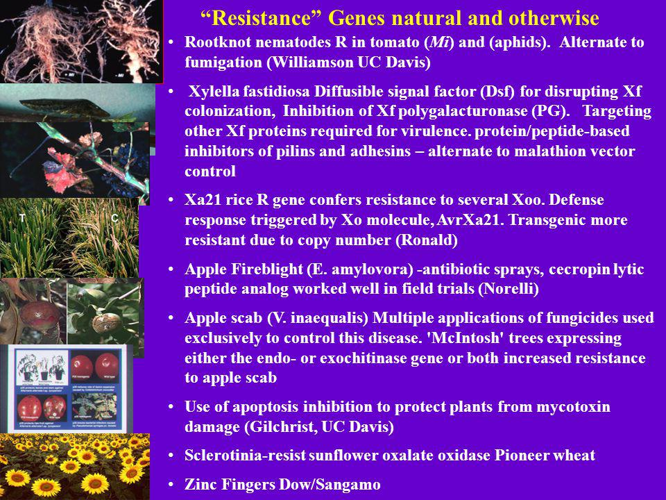 Resistance Genes natural and otherwise