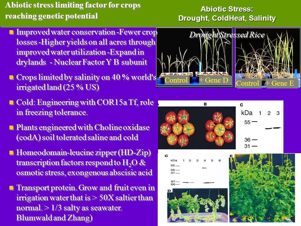 Abiotic Stress: Drought, ColdHeat, Salinity