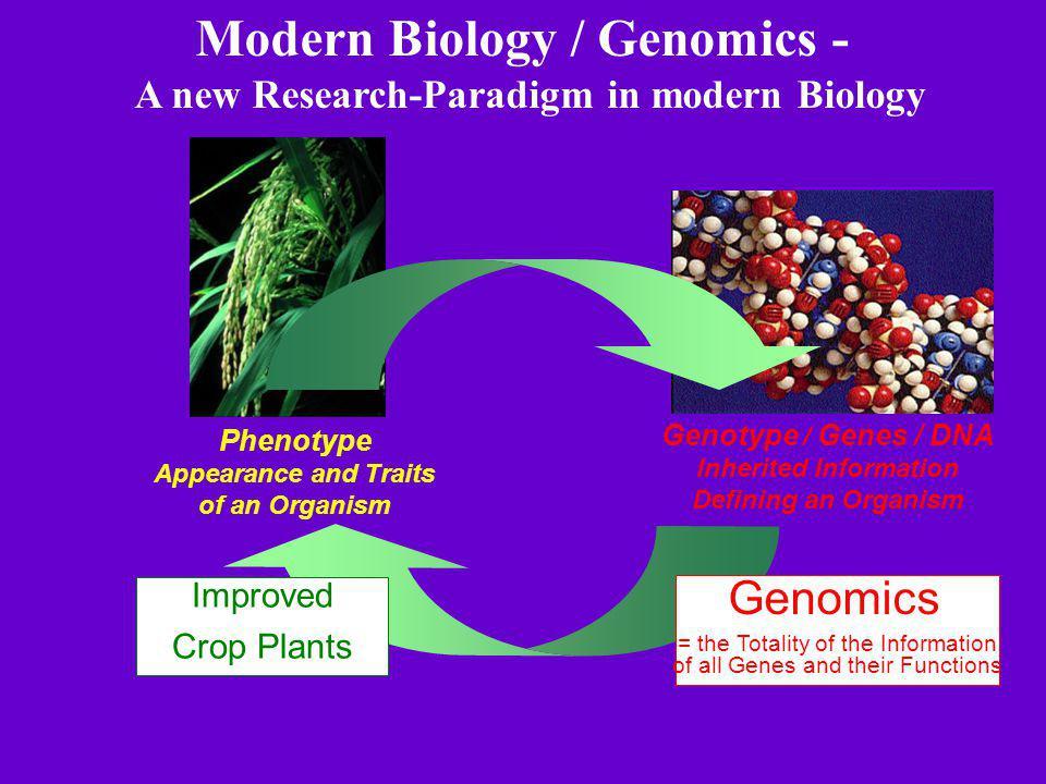 Modern Biology / Genomics - A new Research-Paradigm in modern Biology
