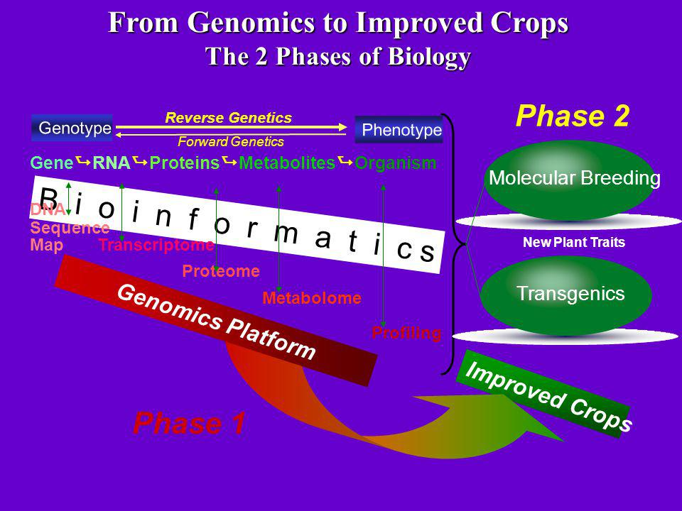 From Genomics to Improved Crops