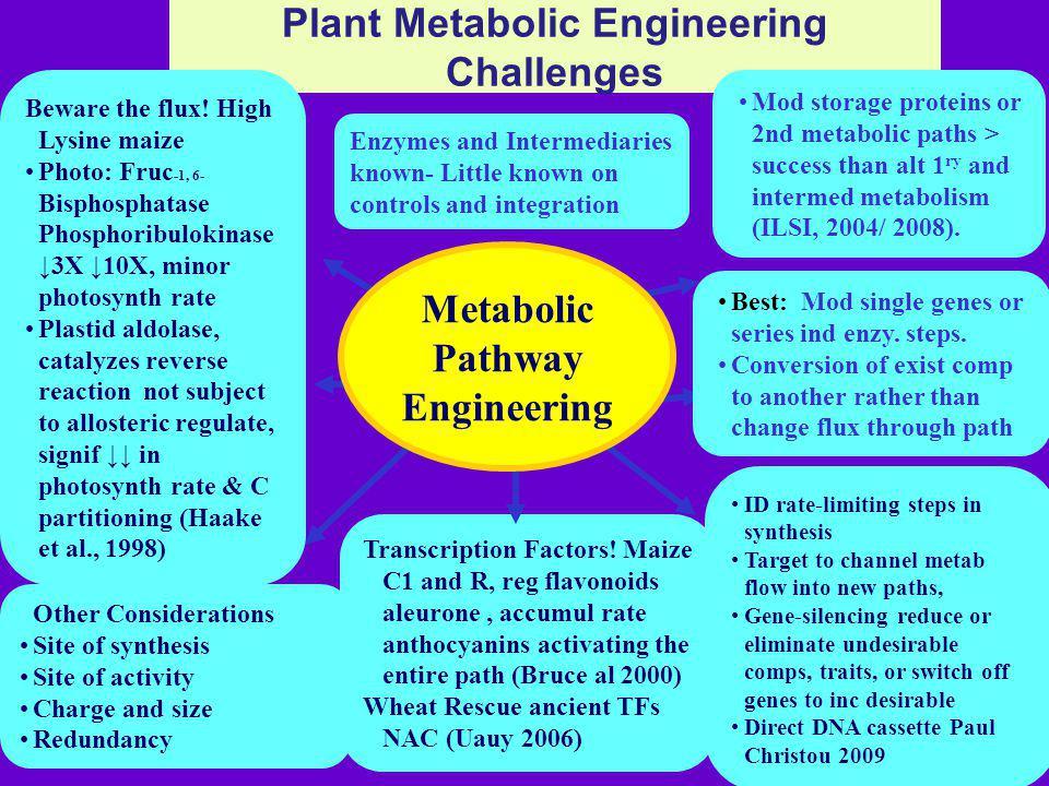 Plant Metabolic Engineering Challenges