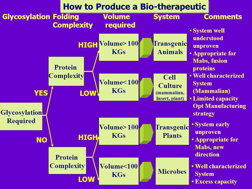 How to Produce a Bio-therapeutic