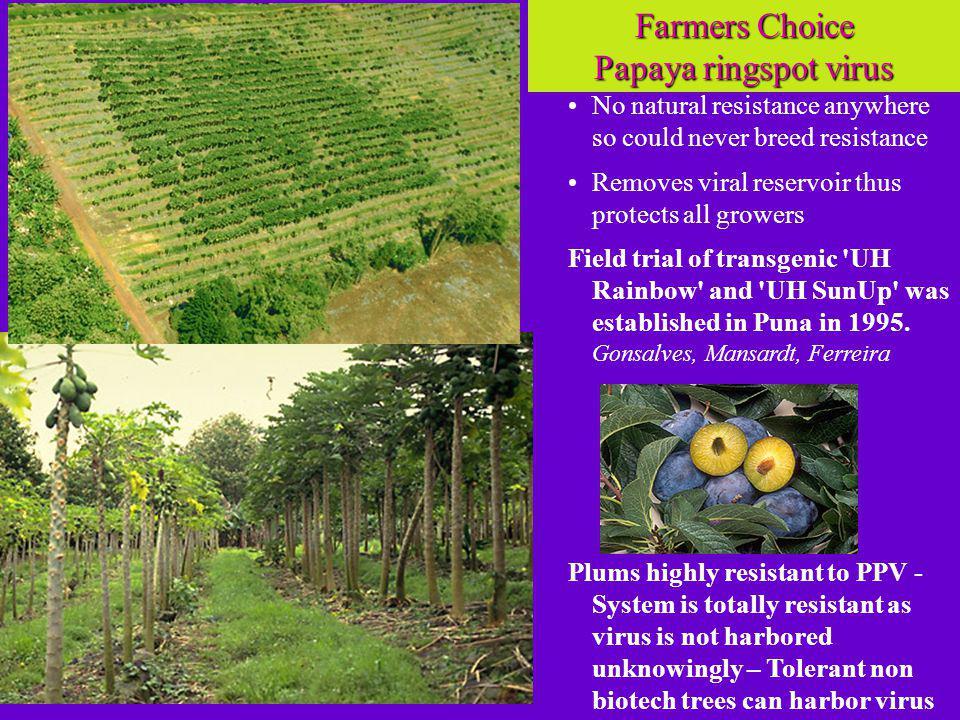 Farmers Choice Papaya ringspot virus