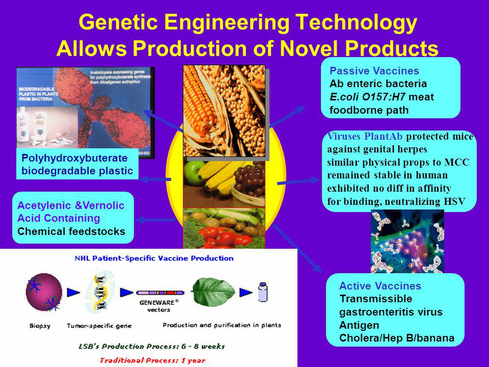 Genetic Engineering Technology Allows Production of Novel Products