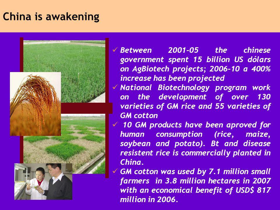 China is awakening