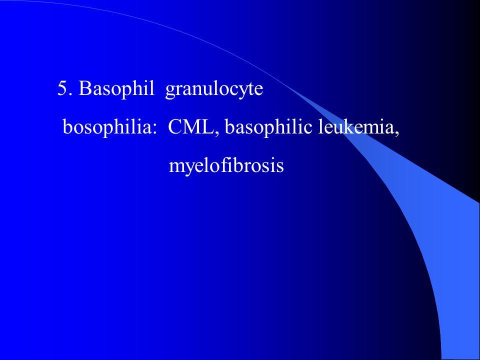 5. Basophil granulocyte bosophilia: CML, basophilic leukemia, myelofibrosis