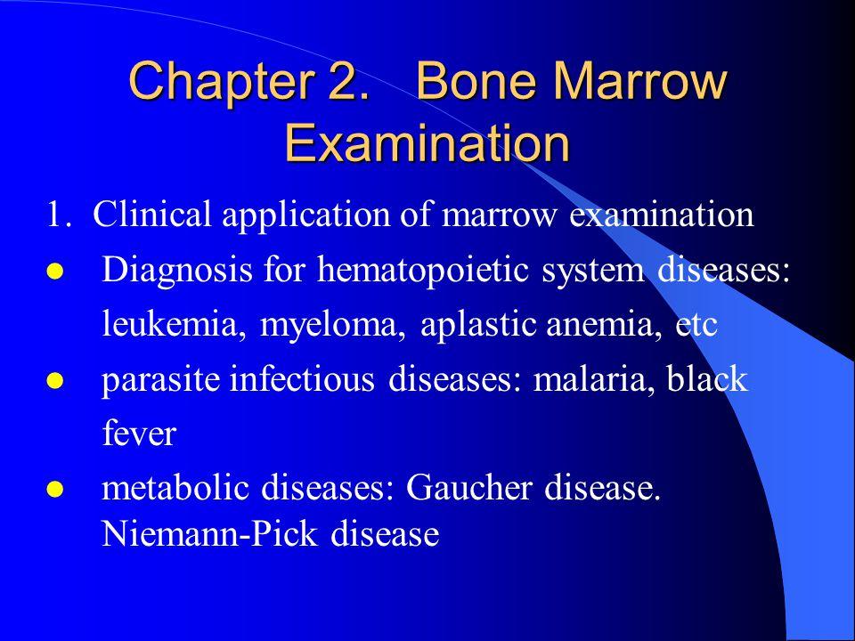 Chapter 2. Bone Marrow Examination