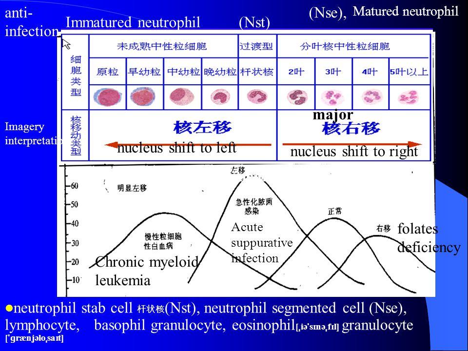 Chronic myeloid leukemia