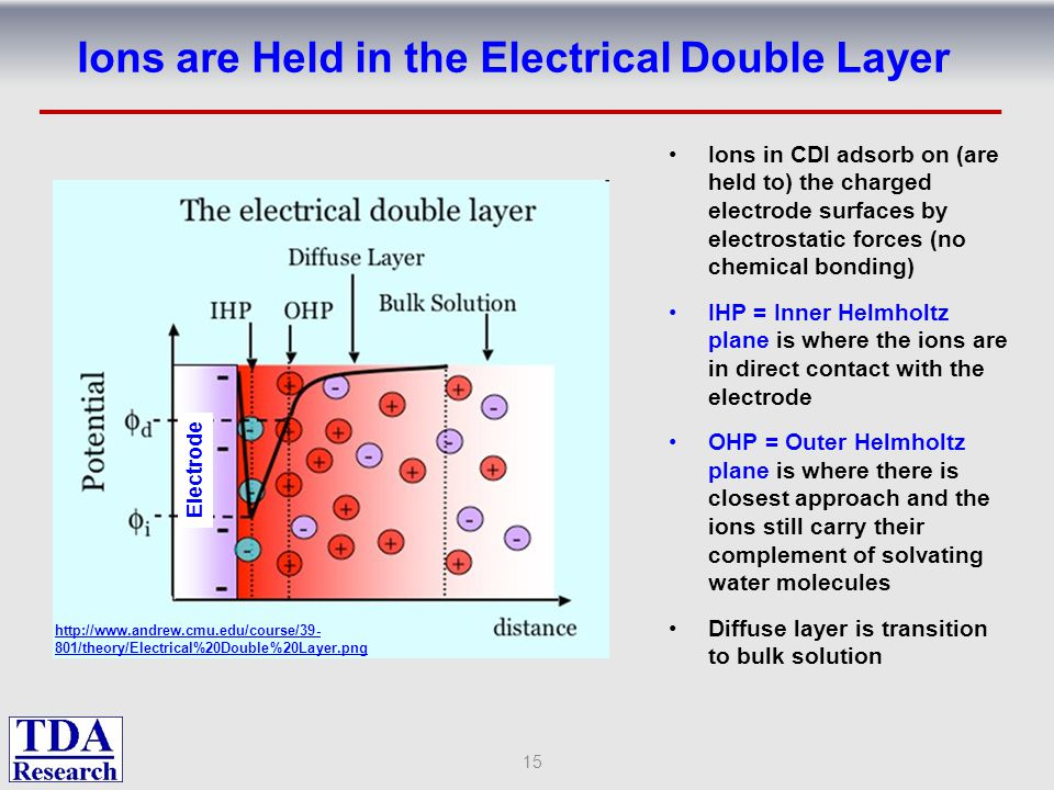 Ions are Held in the Electrical Double Layer