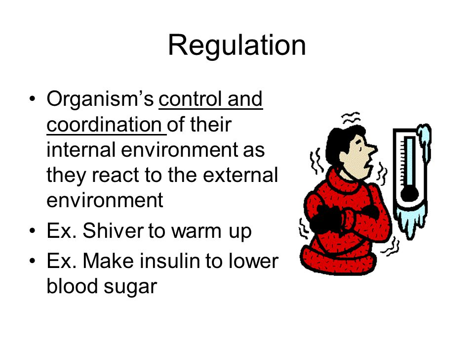 Regulation Organism's control and coordination of their internal environment as they react to the external environment.