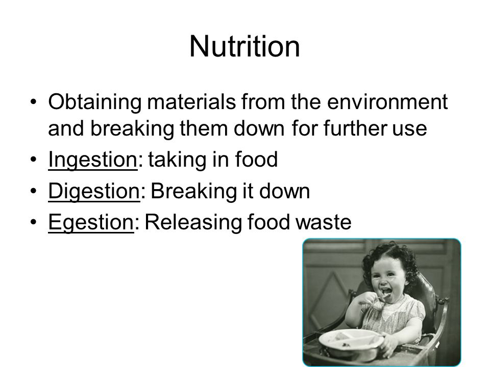 Nutrition Obtaining materials from the environment and breaking them down for further use. Ingestion: taking in food.