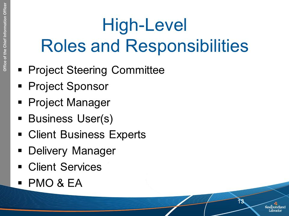 High-Level Roles and Responsibilities