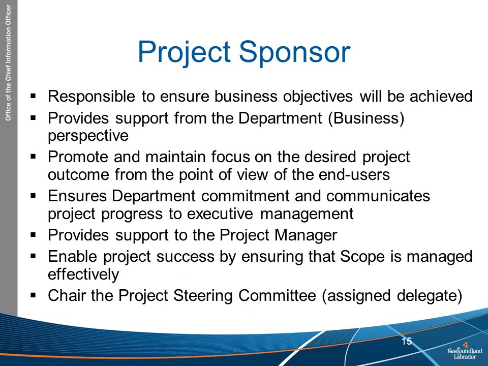 Project Sponsor Responsible to ensure business objectives will be achieved. Provides support from the Department (Business) perspective.