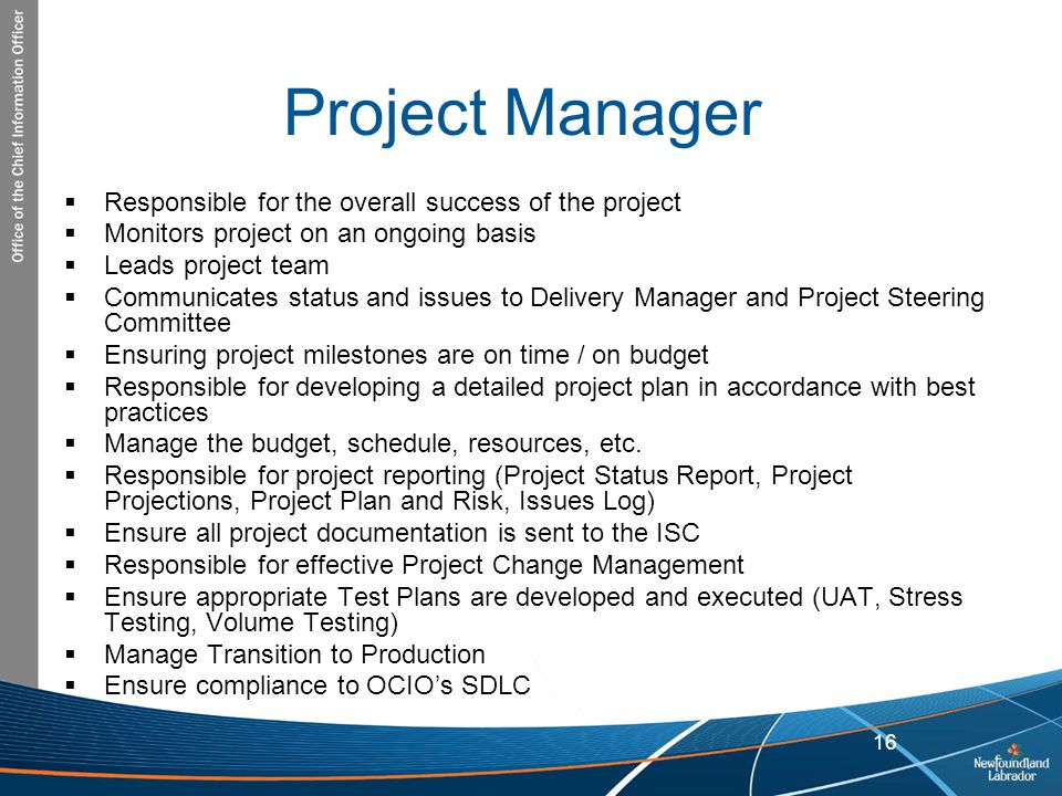 Project Manager Responsible for the overall success of the project