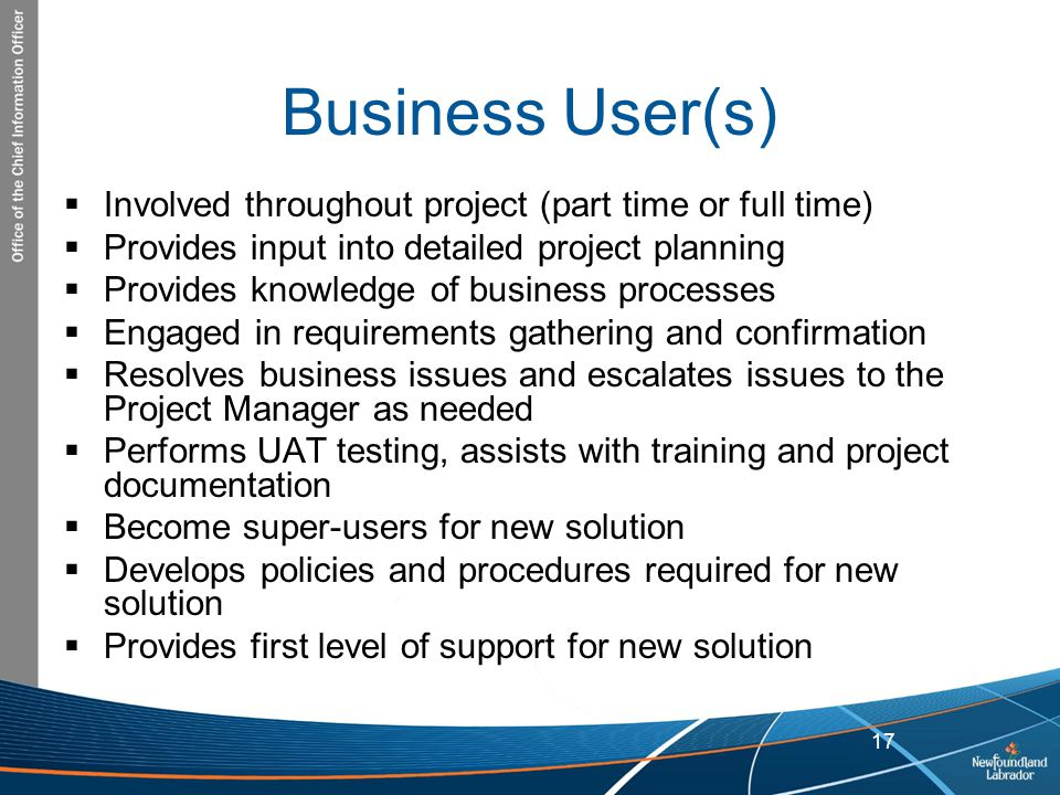Business User(s) Involved throughout project (part time or full time)