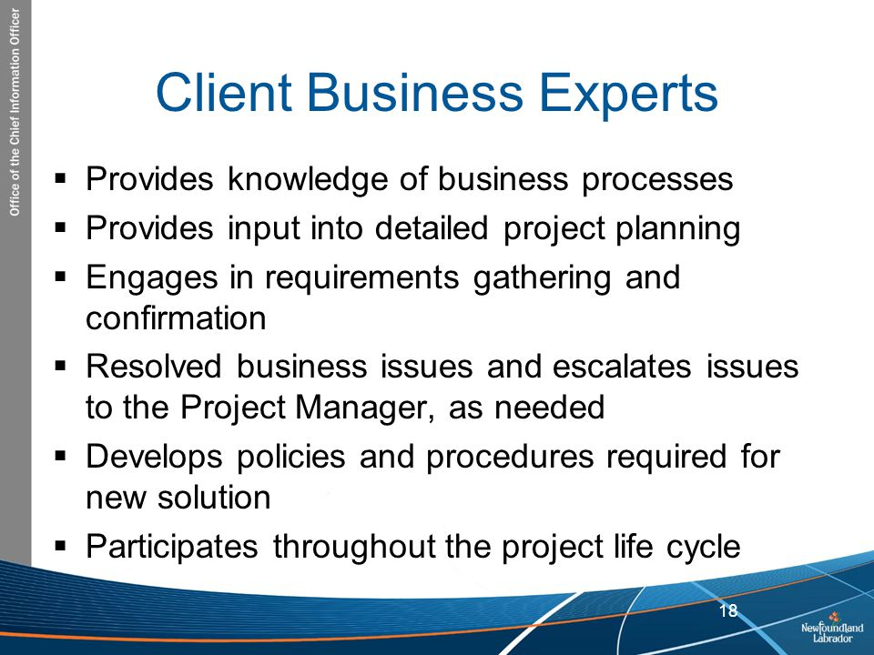 Client Business Experts