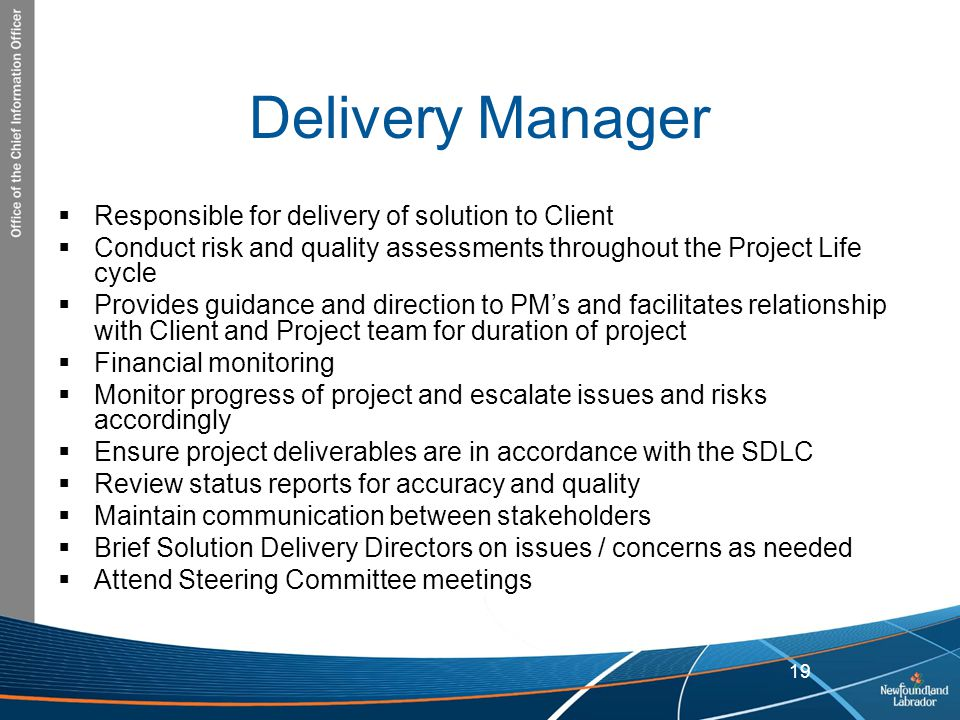 Delivery Manager Responsible for delivery of solution to Client