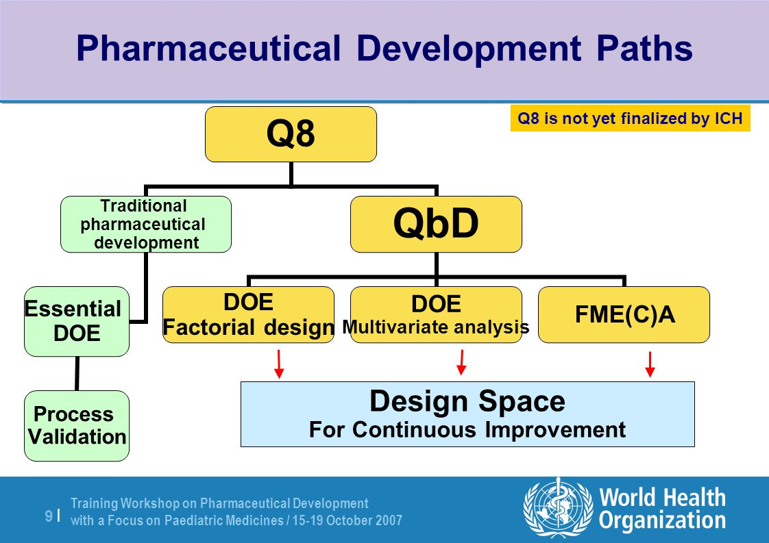 Pharmaceutical Development Paths