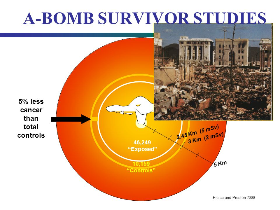 A-BOMB SURVIVOR STUDIES