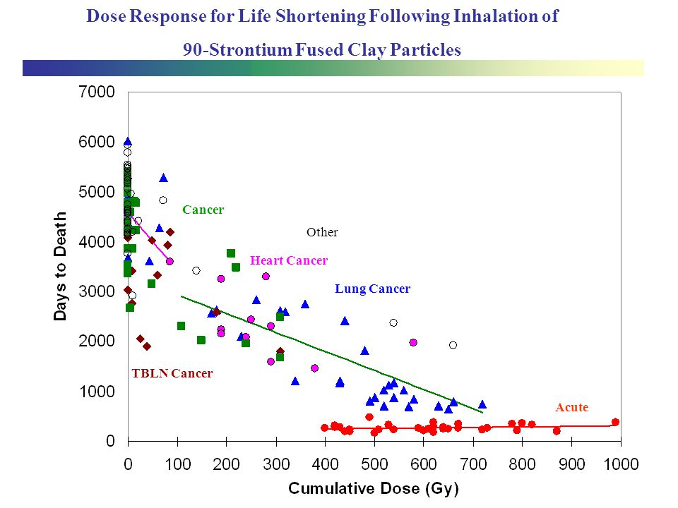 Dose Response for Life Shortening Following Inhalation of