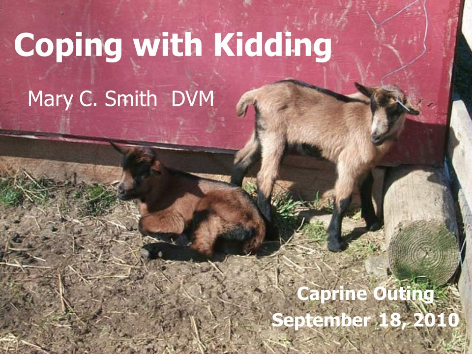 Caprine Outing September 18, 2010