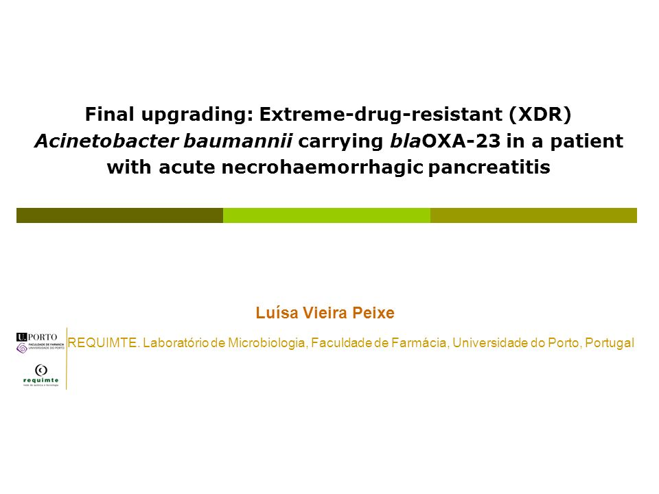 Final upgrading: Extreme-drug-resistant (XDR) Acinetobacter baumannii carrying blaOXA-23 in a patient with acute necrohaemorrhagic pancreatitis