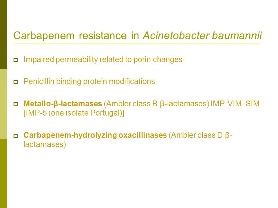 Carbapenem resistance in Acinetobacter baumannii