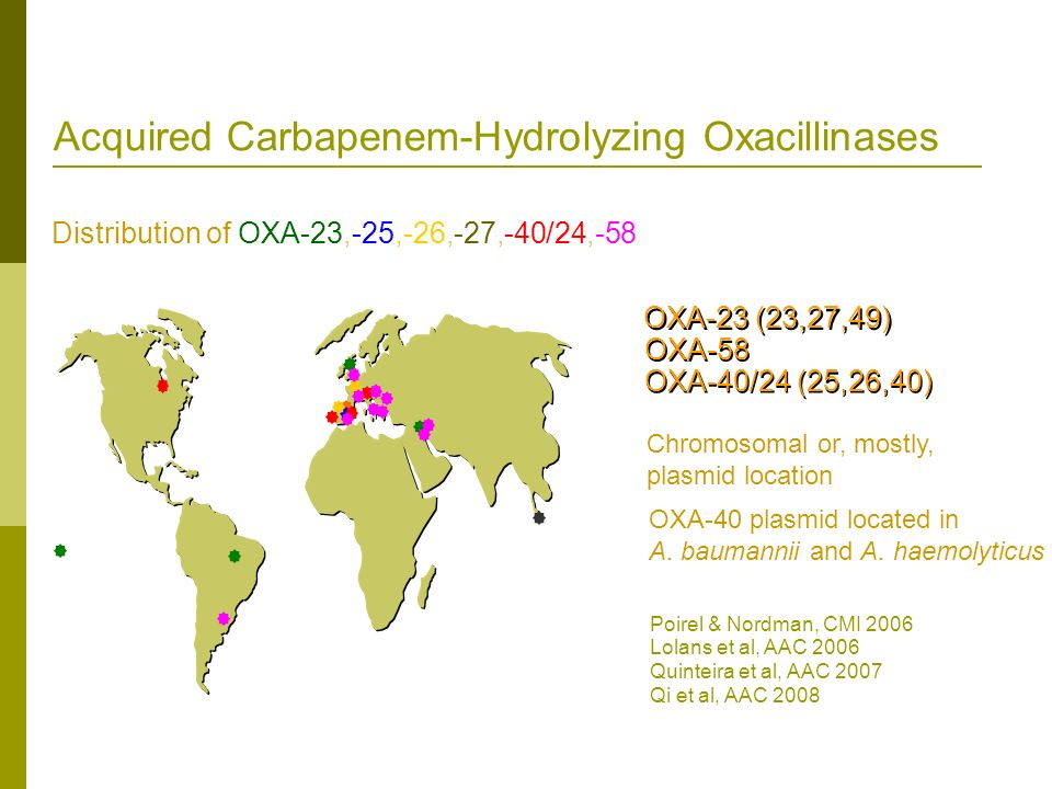 Acquired Carbapenem-Hydrolyzing Oxacillinases