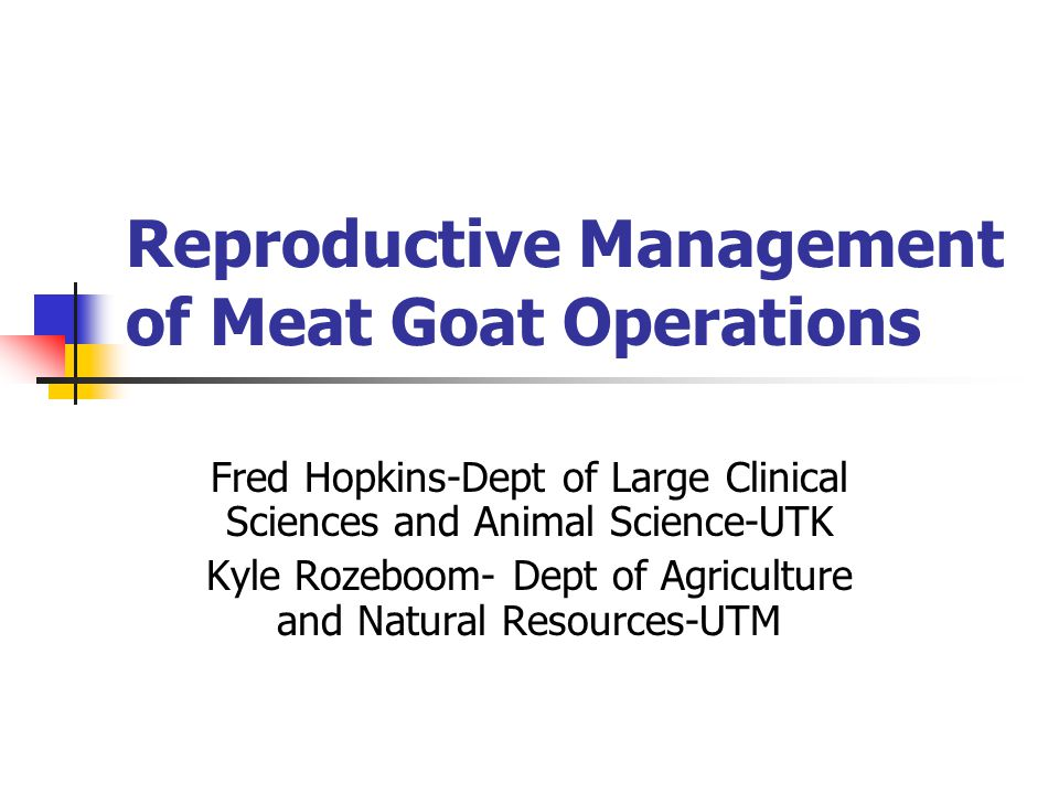 Reproductive Management of Meat Goat Operations