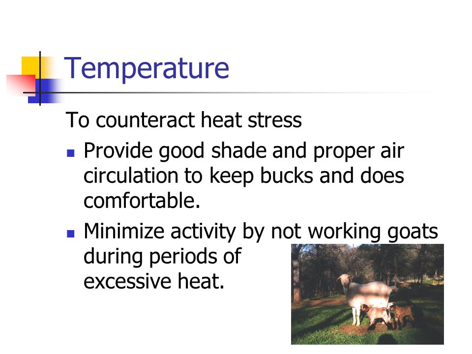 Temperature To counteract heat stress